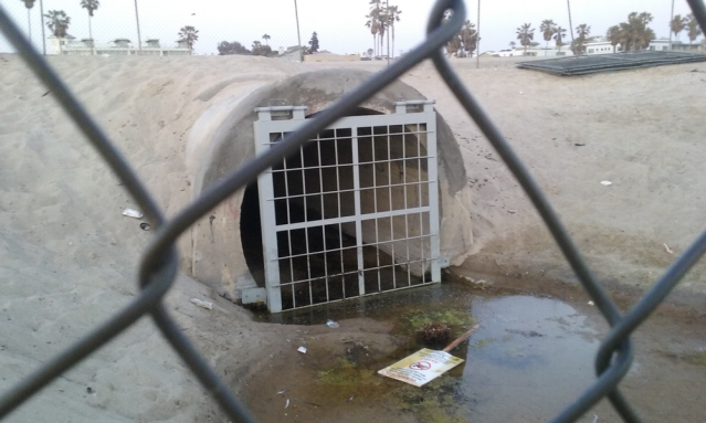 Storm Drain at Thornton Avenue-16